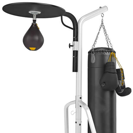 punching bag: Punching bag with gloves, close view. 3D graphic object on white background