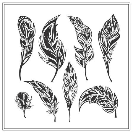 villi: Set  monochrome feathers on a white background. Isolated decorative elements for design. Vector illustration Illustration