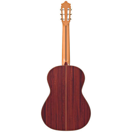 fingerboard: Classical guitar with wooden fingerboard, back view. 3D graphic Stock Photo