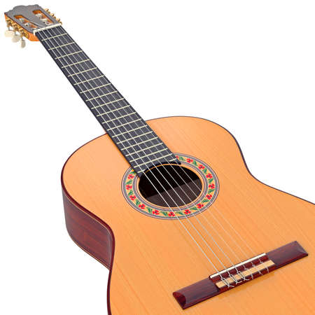 fingerboard: Classical guitar fingerboard with frets and nylon strings, zoomed view. 3D graphic
