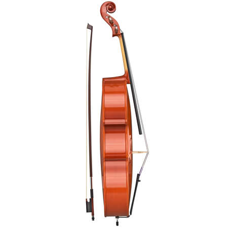 fiddlestick: Classic cello string musical equipment, side view. 3D graphic