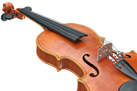 stringed: Viola classical stringed musical equipment, close view. 3D graphic