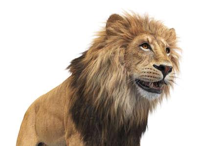 Lion orange leo beautiful mammal, close view. 3D rendering