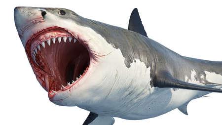 Predatore marino dello squalo bianco con grande bocca aperta e denti. Rendering 3D