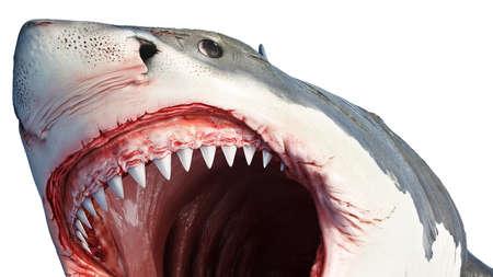 Pesce grande predatore marino dello squalo bianco, vista vicina Rendering 3D