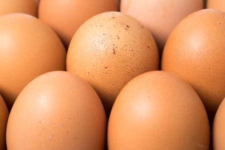 bagging: Closeup of Chicken eggs
