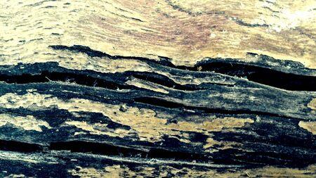 texture: Wooden Texture