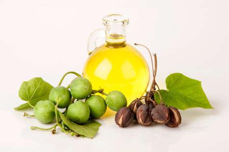 Black Soap, Physic nut, Purging nut, Barbados nut, Kuikui pake, mogelijk leidend tot winning en productie van biodiesel.