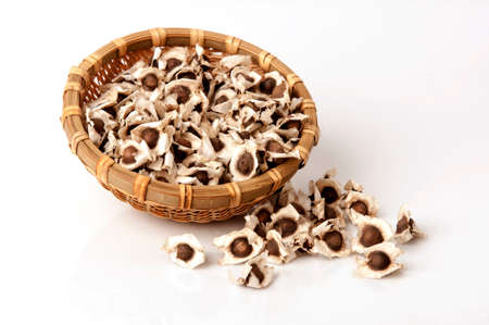 squeezing: Moringa and seeds.