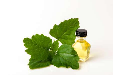 Patchouli  with essential oil. Stock fotó