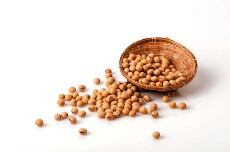 Soy beans. (Glycine max (L.) Merr.) Stock Photo