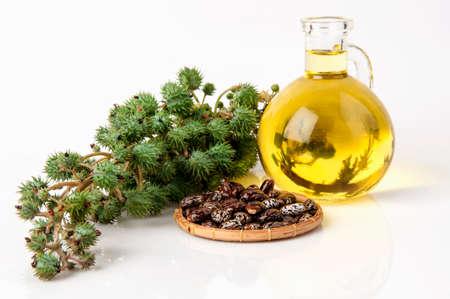Castor olie met castor fruit, zaden en blad.
