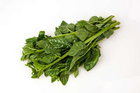 Ceylon Spinach, East Indian Spinach, Indian Spinach, Malabar Nightshade, Vine Spinach (Basella alba Linn.). isolated on white background.