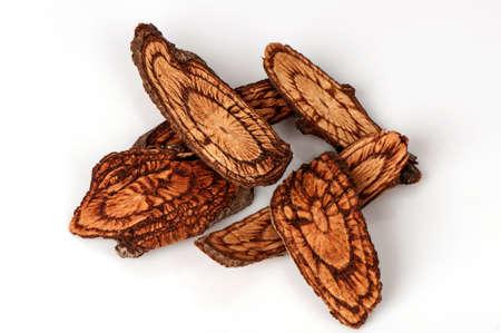 ニシキギ (サラシア成虫 l.)インドシナ、反媚薬の果実を使用します。フィリピンでねぐらは月経痛の治療のためのハーブ薬として使用されます。 写真素材