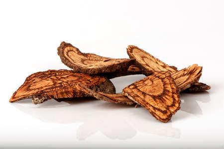 CELASTRACEAE (Salacia chinensis L.) In Indochina wordt het fruit gebruikt voor anti-afrodisiacum. In de Filippijnen worden de roost gebruikt als kruidengeneeskunde voor de behandeling van menstruele pijn. Stockfoto