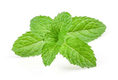 Fresh raw mint leaves isolated on white background with high quality