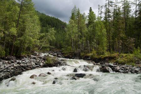 cascade: Cascade falls over mossy rocks