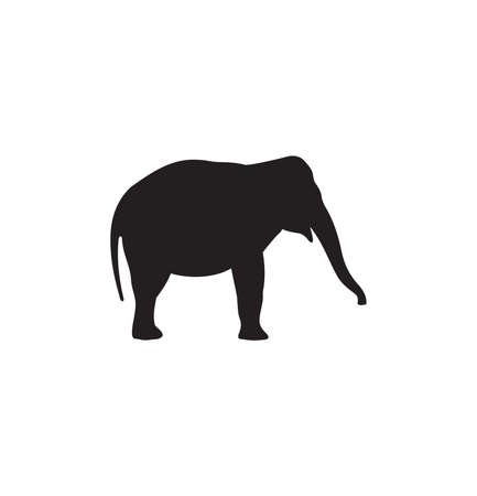 Vector illustration of the elephant