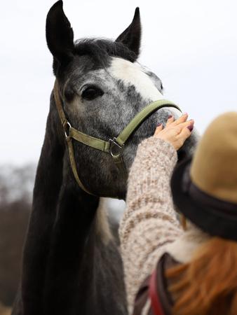 a woman stroking a horse 版權商用圖片