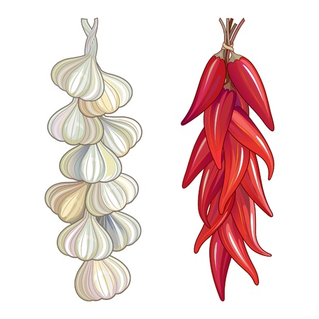Bunches of garlic and red chili pepper tied in a traditional string. Иллюстрация