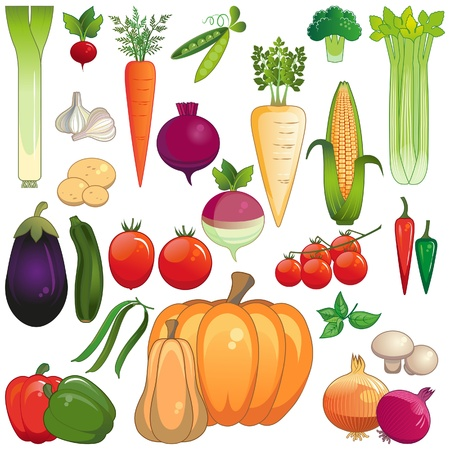 Large icon set of vegetables isolated on white background  Vector