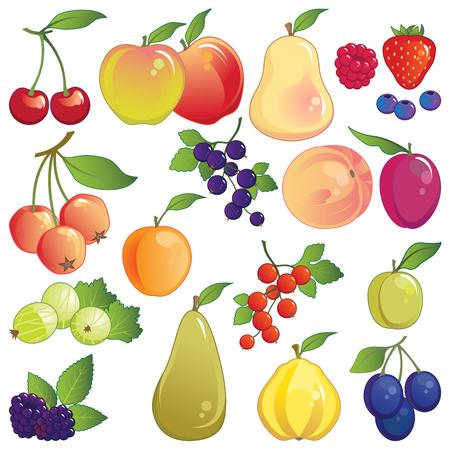 Fruit. Grote pictogram set van verse boomgaard en tuin fruit. Stock Illustratie