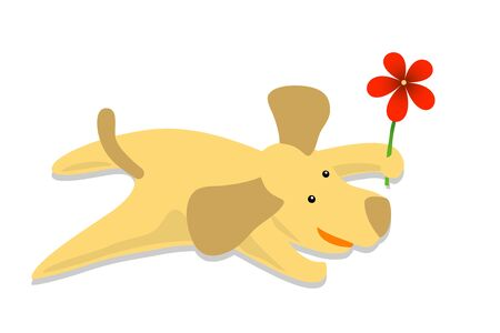dog with flower Stock Photo