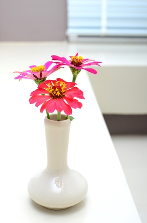 flower on vest, interior Stock Photo