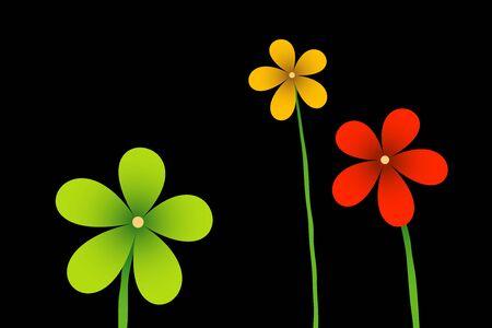 3. virágok a fekete háttér