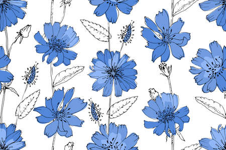 Art floral vector seamless pattern. Blue succory (chicory) on white background. Isolated vector flowers, leaves and buds.  イラスト・ベクター素材