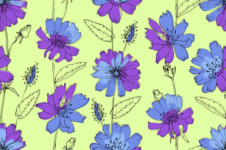 Art floral vector seamless pattern. Blue and purple succory (chicory) on light green background. Isolated vector flowers, leaves and buds. Stock Illustratie