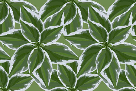 Floral vector seamless pattern with hosta. For fabric, home and kitchen textile, wrapping paper, wallpaper design.  Isolated green and white leaves on a green background. Illustration