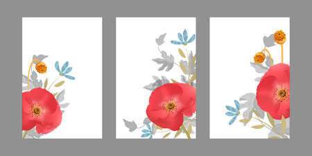 Vector floral templates with red poppies, blue naive flowers. Papaver flowers with seeds and transparent leaves isolated on white background. For romantic greeting cards, posters, advertisement. Ilustração