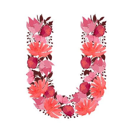 Vector floral letter, capital character U. Botanical monogram. Pink, maroon, coral color flowers in the shape of a bold letter isolated on white background. Chicory, peonies, lilies with branches.