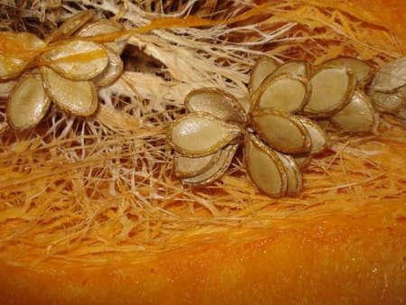 Juicy orange flesh of the pumpkin with ripe seeds and fibers.