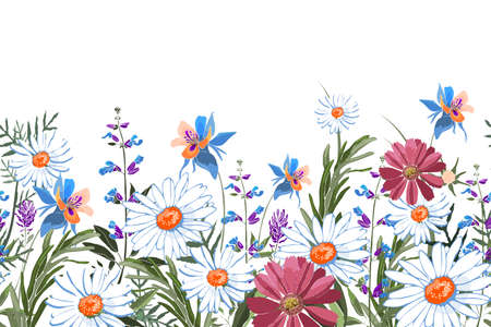 Vector floral seamless border. Summer flowers, green leaves. Chamomile, aquilegia, columbine, sage, rosemary, lavender, marigold, oxeye daisy. White, blue, pink, purple garden flowers on white.