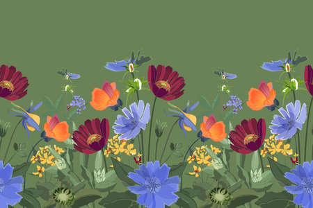 Vector floral seamless border. Summer flowers, green leaves. Chicory, mallow, gaillardia, marigold, oxeye daisy. Maroon, orange, yellow, blue flowers on green background.