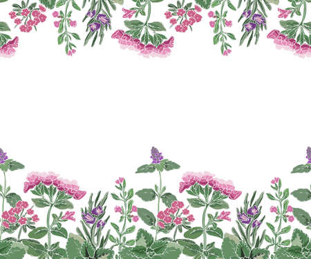 Vector floral seamless border with flowers and culinary spicy herbs. Rosemary, thyme, mint, oregano, melissa (sweet-Mary) with stems, branches, leaves and flowers. Herb isolated on white background.