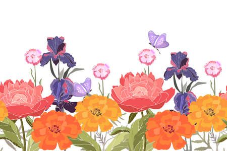 Vector floral seamless pattern, border. Peonies, irises, carnations, marigolds, tagetes. Summer flowers with butterfly isolated on white background.