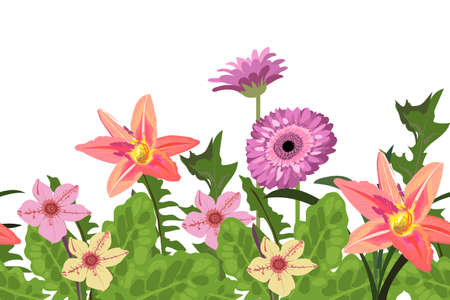 Vector floral seamless border, pattern with daylilies and gerbera daisies. Summer background with vector flowers.