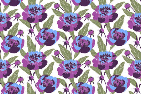 Vector floral seamless pattern. Blue, purple peonies, buds, green leaves isolated on white background. 免版税图像 - 151866106