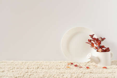 White plate and jug. Twig with red autumn leaves. Objects on a white fluffy rug against a white wall. 免版税图像 - 157169959