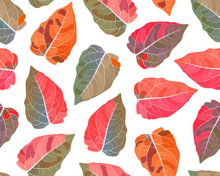 Vector plant seamless pattern. Colorful leaves on a white background. Leaf background. 矢量图像