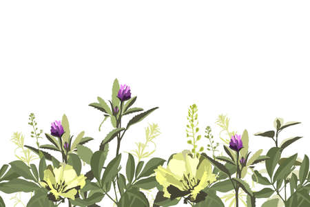 Vector floral seamless pattern, border with yellow and purple flowers, green herbs, leaves. Flame azalea, godetia, purple clover isolated on a white background. Ilustracje wektorowe