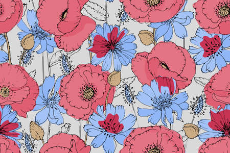 Vector floral seamless pattern. Pink, red poppies, blue chicory isolated on a light gray background. Summer flowers.