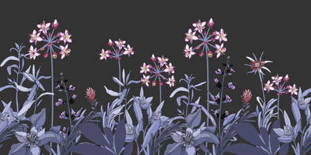 Vector floral seamless pattern, border with pink and purple flowers, blue and violet herbs. Vector plant isolated on a dark gray background. Garden at night. 矢量图像