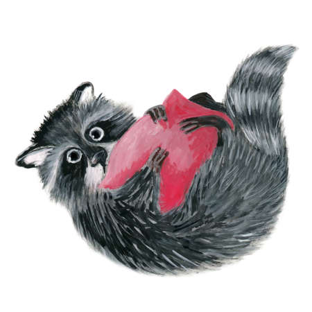 A small cute fluffy raccoon holds a red pillow in its paws. Cartoon character isolated on white background. Illustration drawn in gouache.