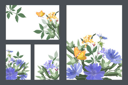 Art floral greeting and business cards. Vector cards with blue chicory, yellow butterflies, green stems and leaves. Blue and yellow small flowers. Vector flowers isolated on a white background. 矢量图像