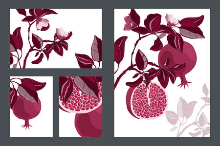 Vector floral cards, templates. Pomegranate tree with maroon fruits and leaves. Ripe pomegranates with grains and flowers isolated on a white background.