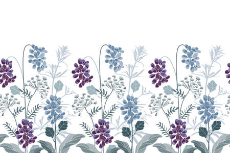 Vector floral seamless border. Blue, purple flowers, herbs and berries. Floral elements isolated on a white background. 矢量图像